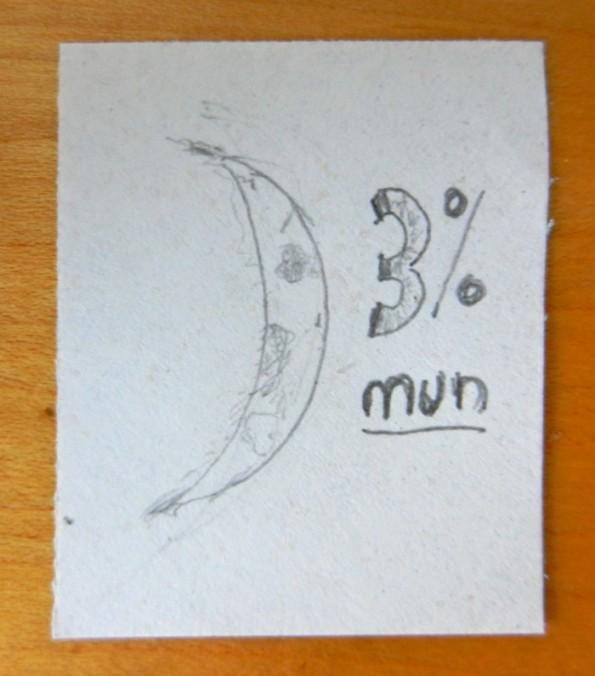3% Mun